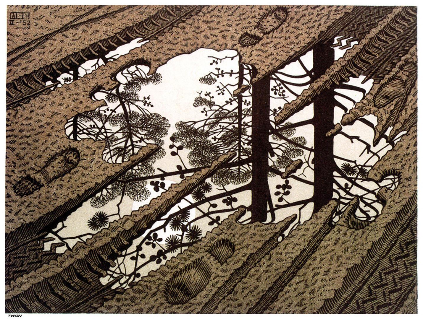 Puddle optical illusion m c escher art wallpaper picture for Mc escher gallery