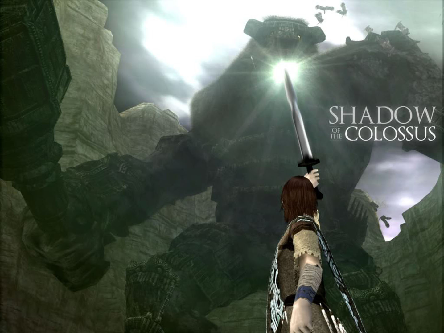 Wander Pointing Sword Of Light At Colossus