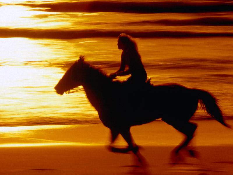 Sunset Ride California Coast