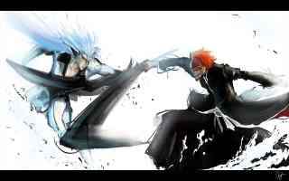ichigo fighting a hollow