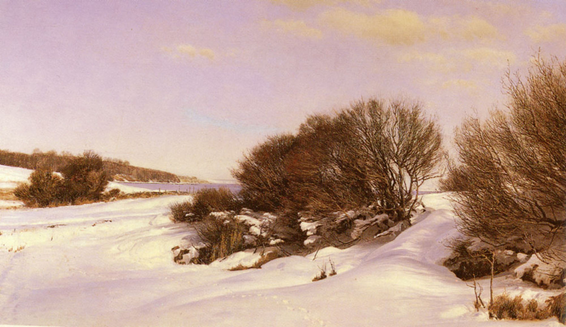 Winter Near The Lake