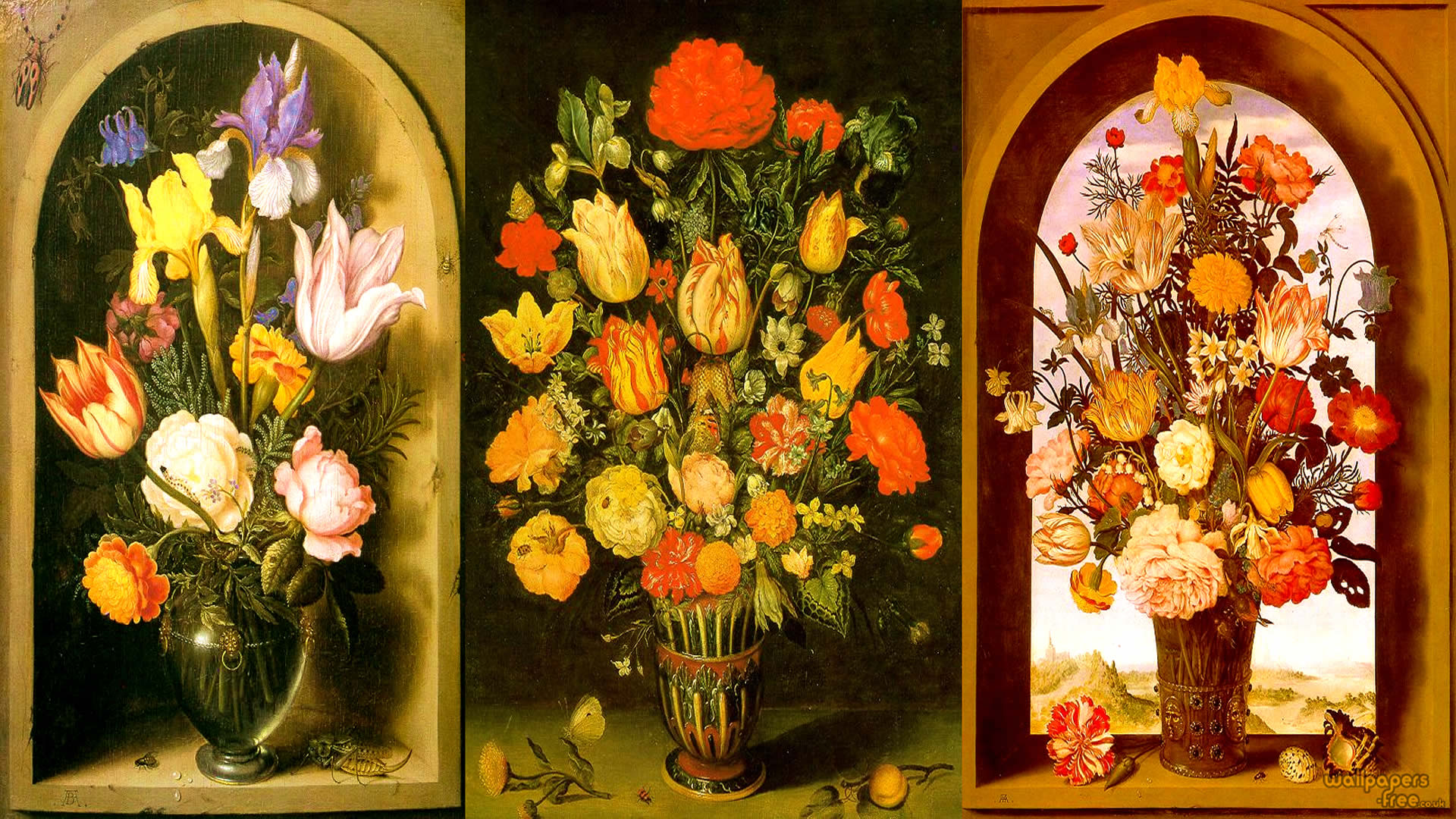 Dutch Baroque Flowers Collection