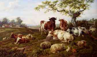 resting cattle sheep and deer a farm beyond