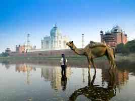 yamuna river agra uttar pradesh india