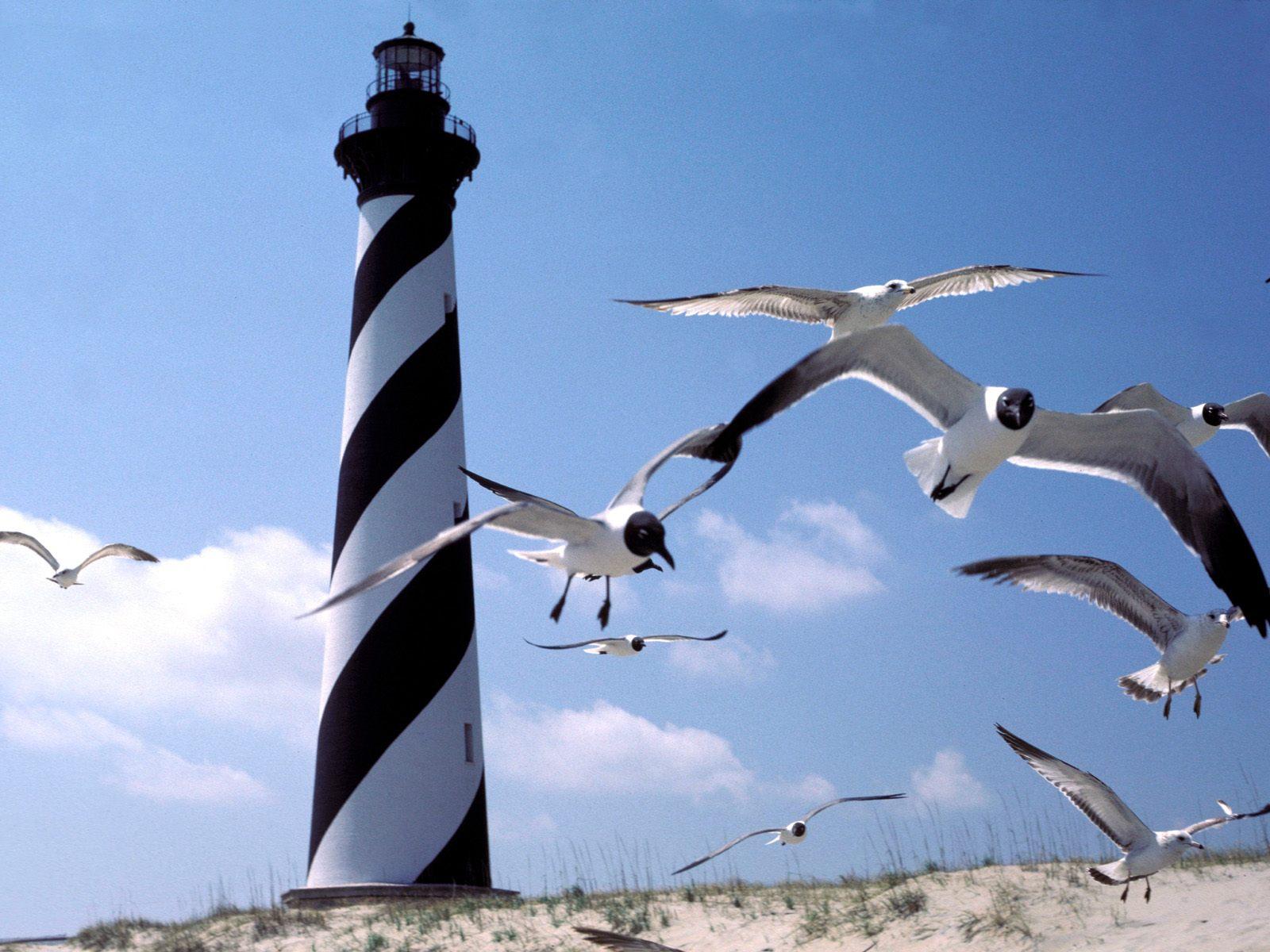 Cape Hatteras Lighthouse North Carolina