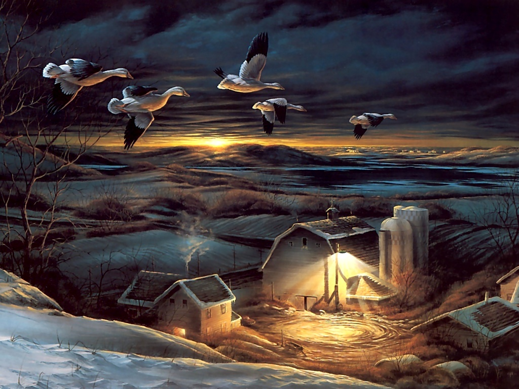 Ducks In Flight Over Farm At Night