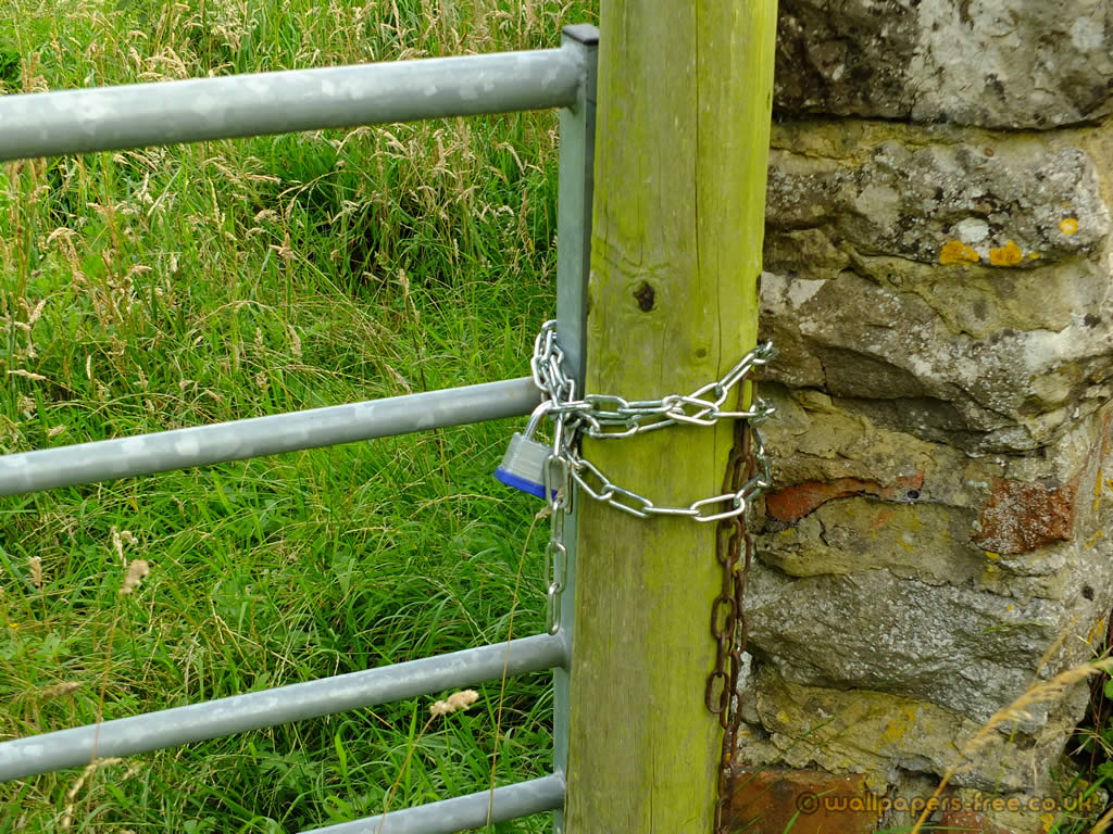 Padlocked Farm Gate