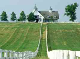 manchester farm lexington kentucky