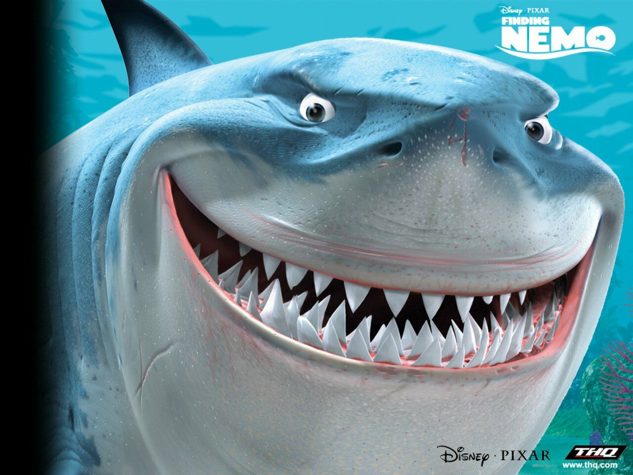 Disney Shark Finding Nemo