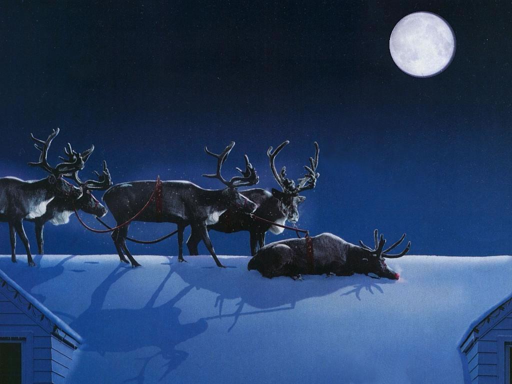 Sleeping On The Job Reindeer