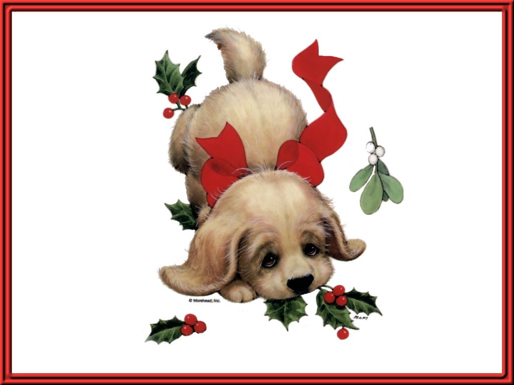 Christmas Puppy - Christmas Cards