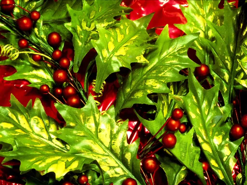 holly and berries - christmas decorations