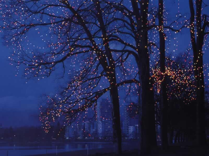 Christmas Lights At English Bay