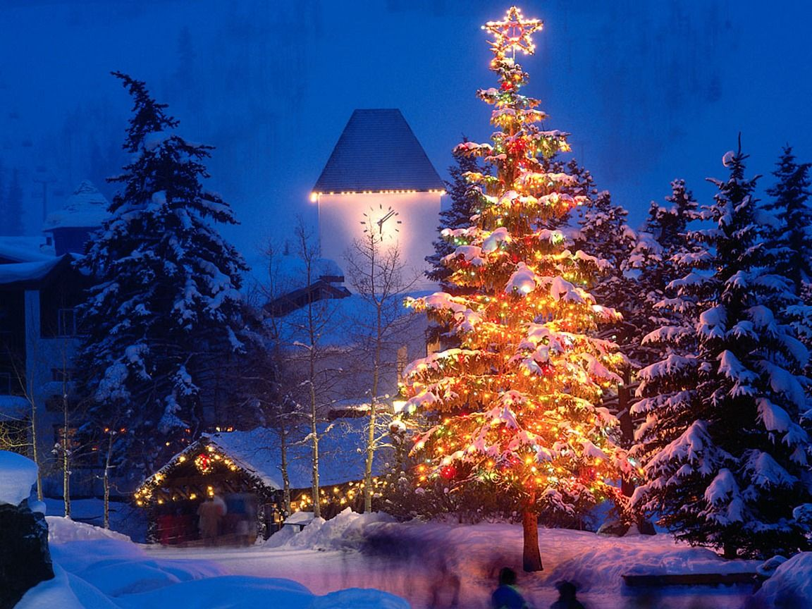 Clock Tower And Christmas Tree