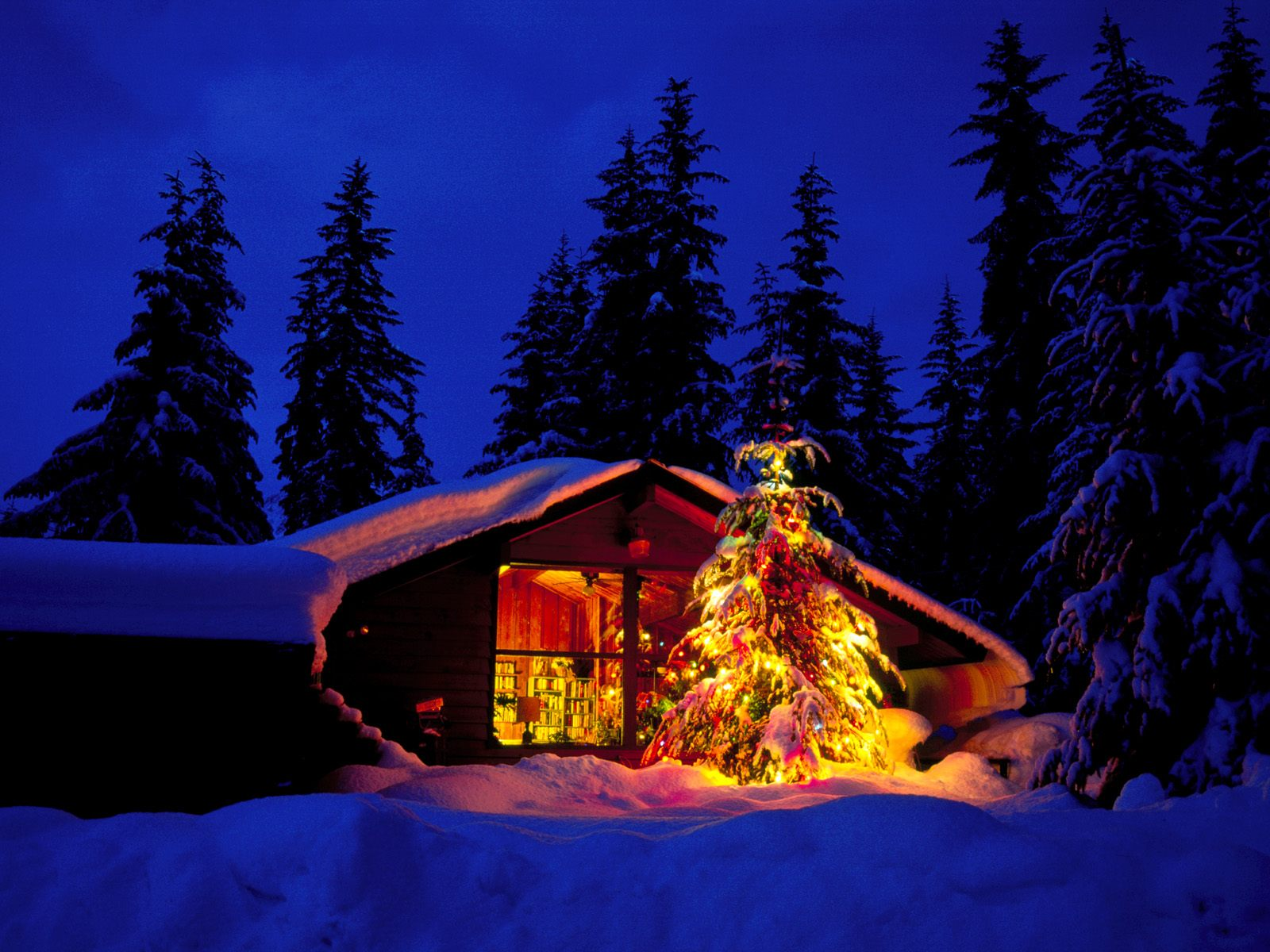 Christmas Cabin And Tree In Deep Snow Christmas Landscapes