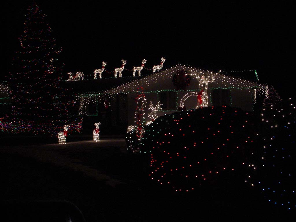 House With Xmas Lights 5