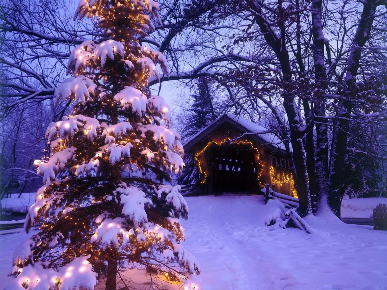 Waupaca Wisconsin  Christmas Scenes Wallpaper Image