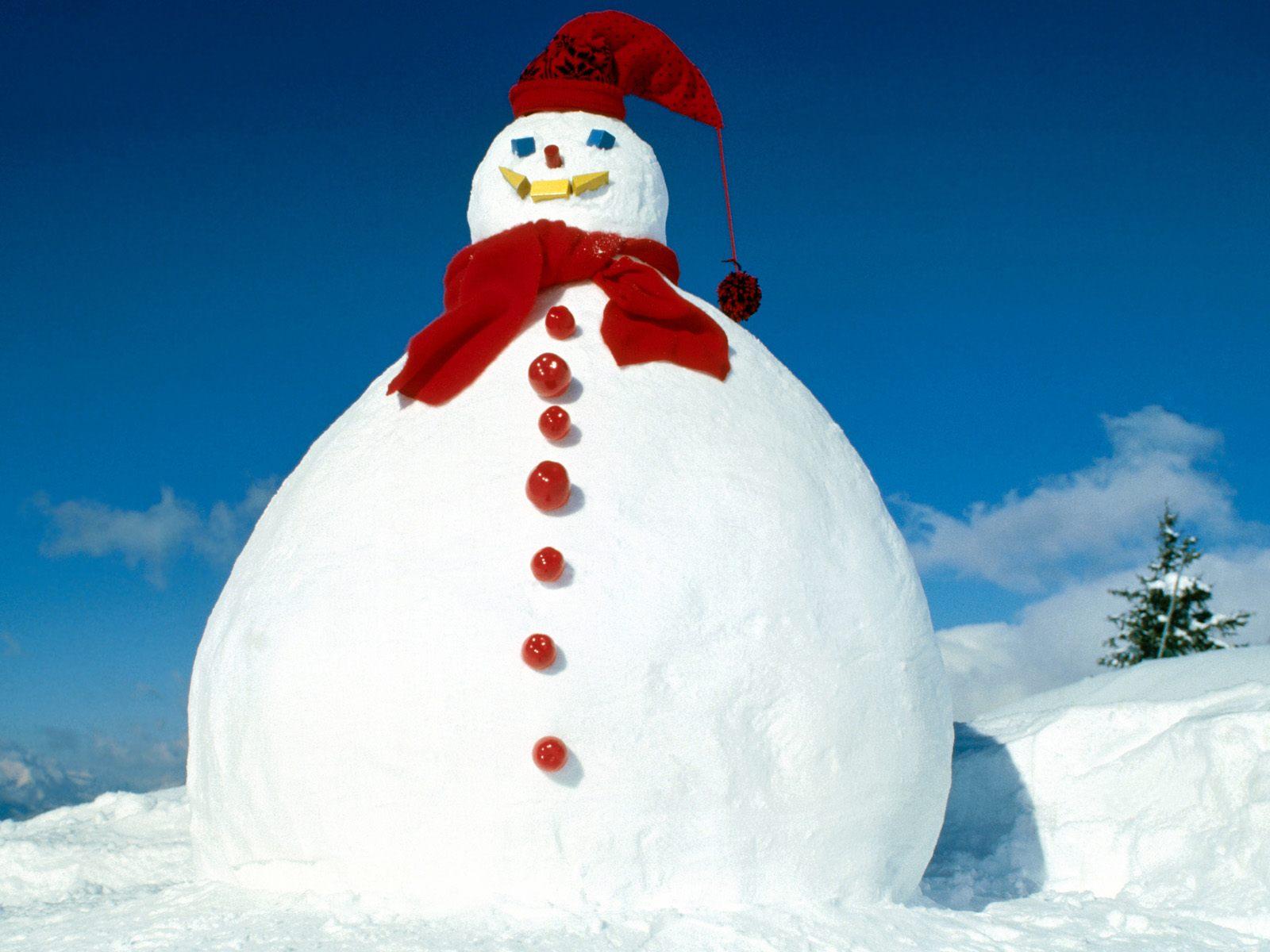 Frostys Cousin