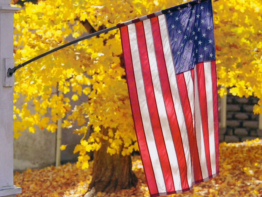 American Flag In Autumn