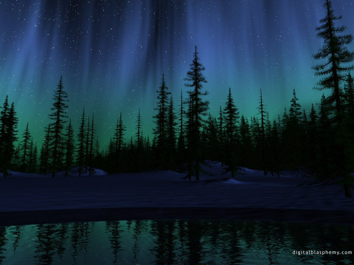 Nature Forest At Night Aurora Borealis