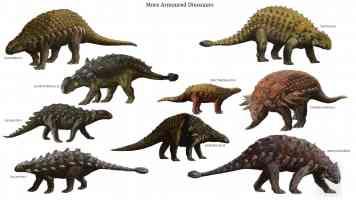 armoured dinosaurs 2