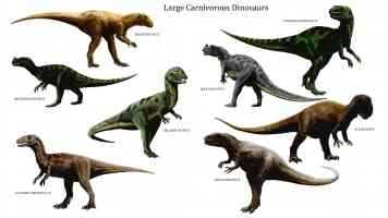 large carnivorous dinosaurs