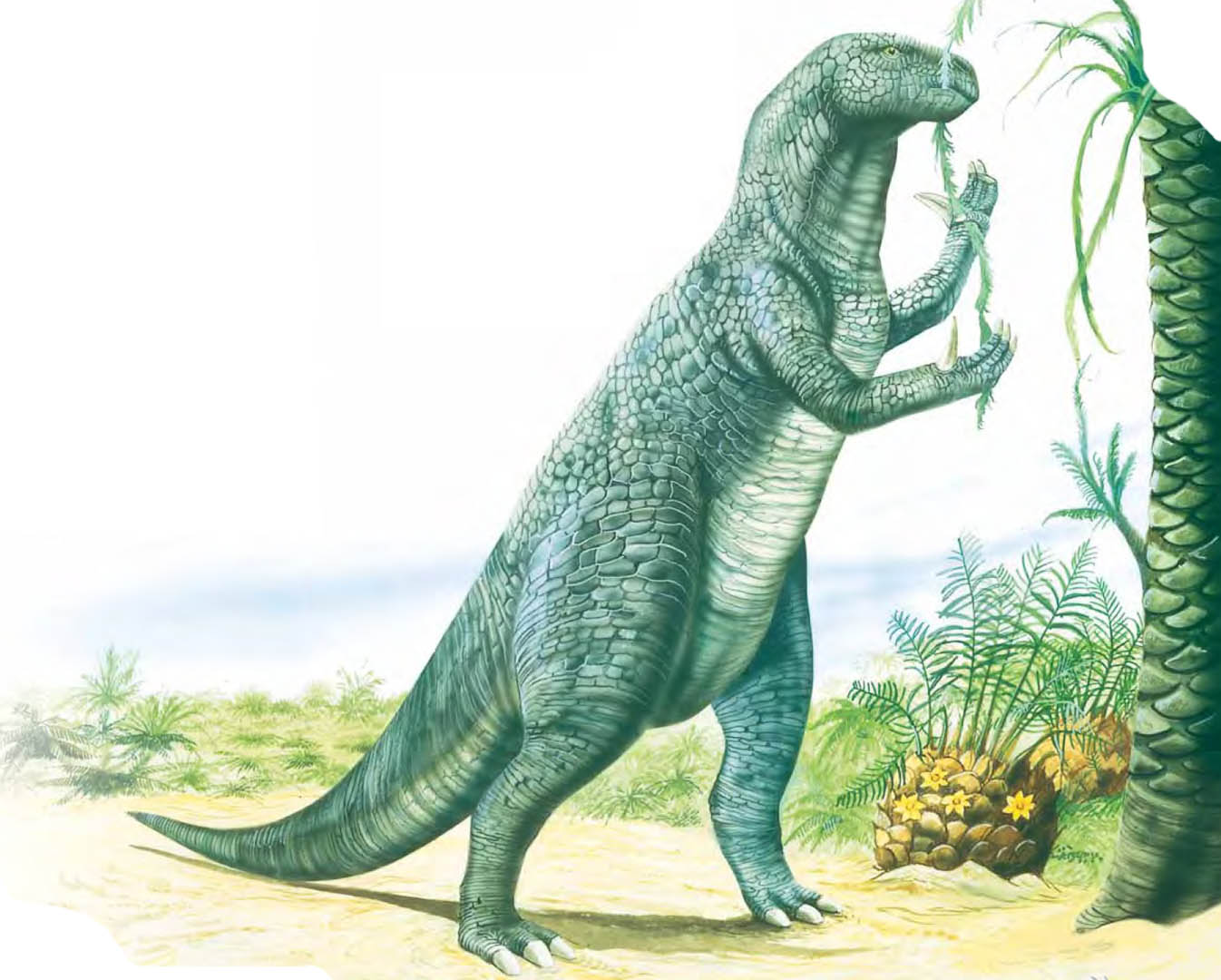 Iguanodon Eating From Tree