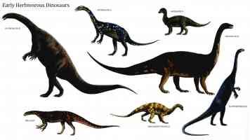 early herbivorous dinosaurs