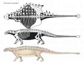 pinacosaurus with clubbed tail