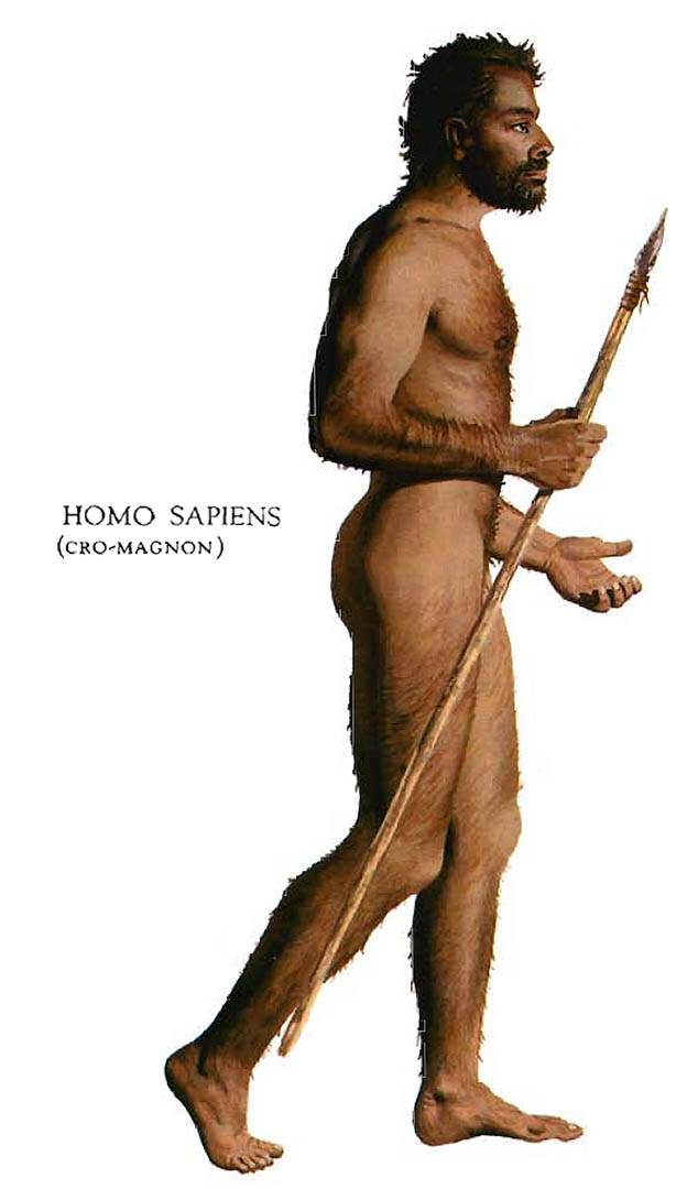 Cro Magnon Stone Age Man