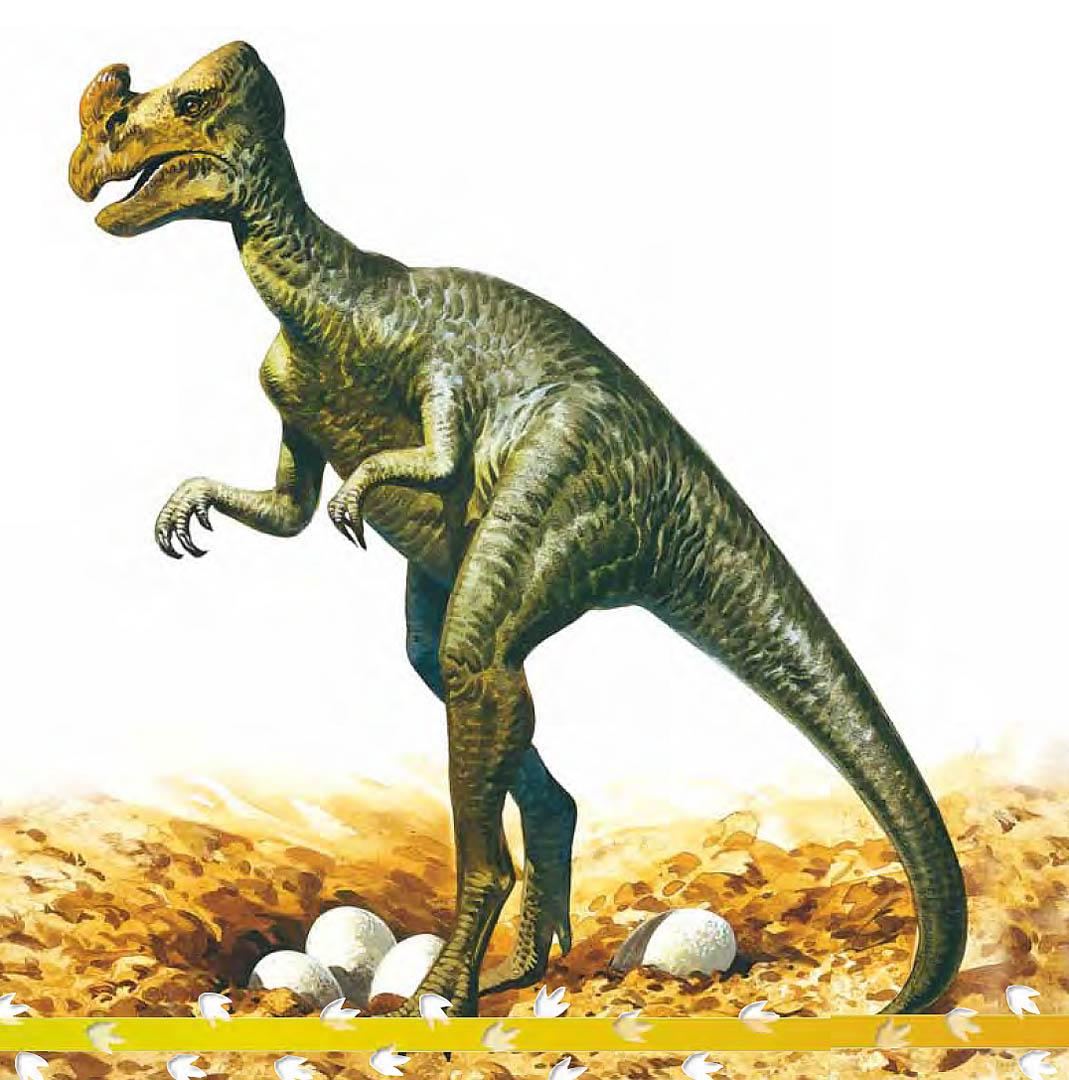 Oviraptor Egg Stealer