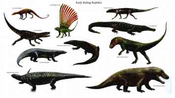 early ruling reptiles