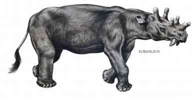 eobasileus knob headed rhino