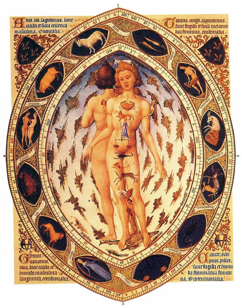 15th Century Drawing Of Zodiacal Man Astrology Wallpaper