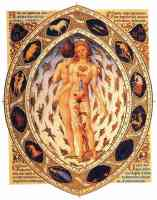 15th century drawing of zodiacal man