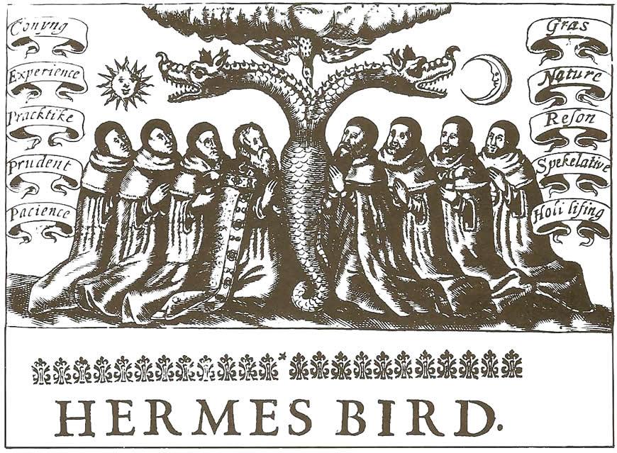 Hermes Bird
