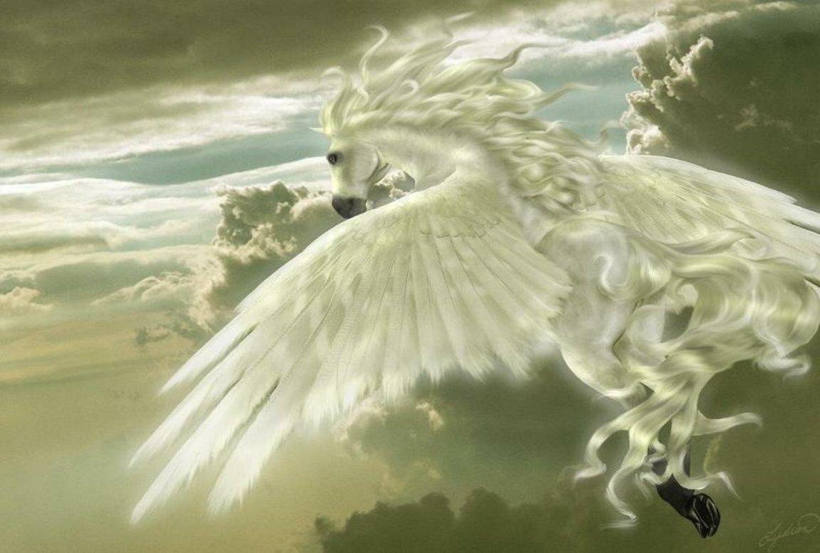 White Winged Pegasus