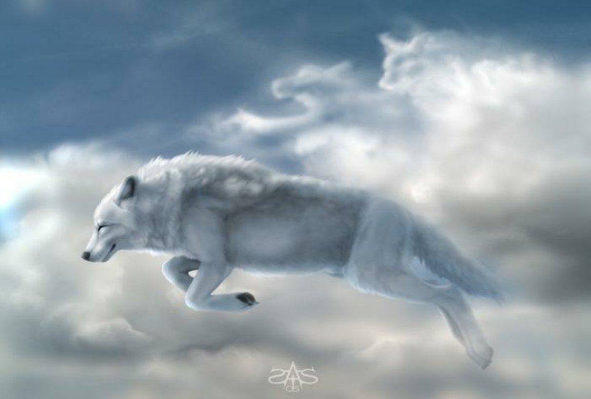 White wolf in the sky