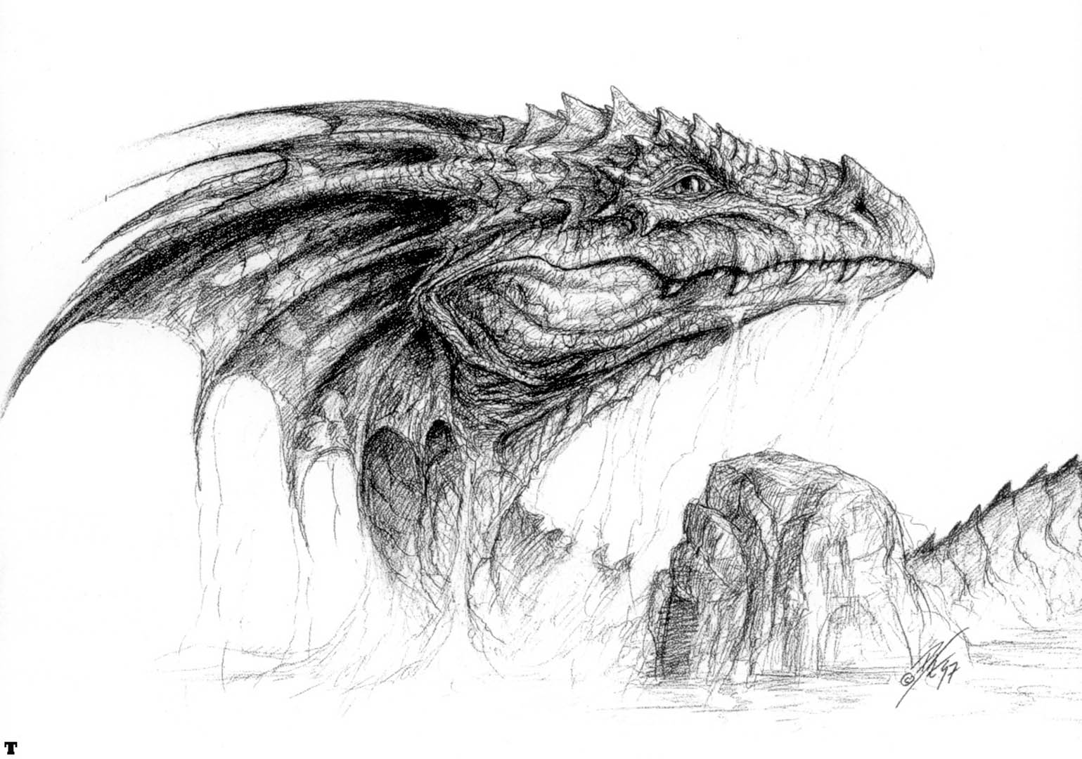 Dragon Head Sketch - Wallpaper Image ...