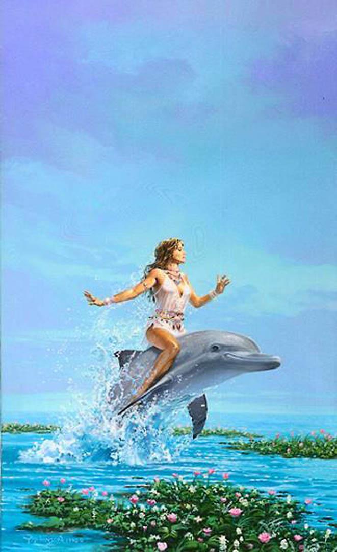 Dolphin Dreams