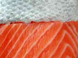 salmon meat