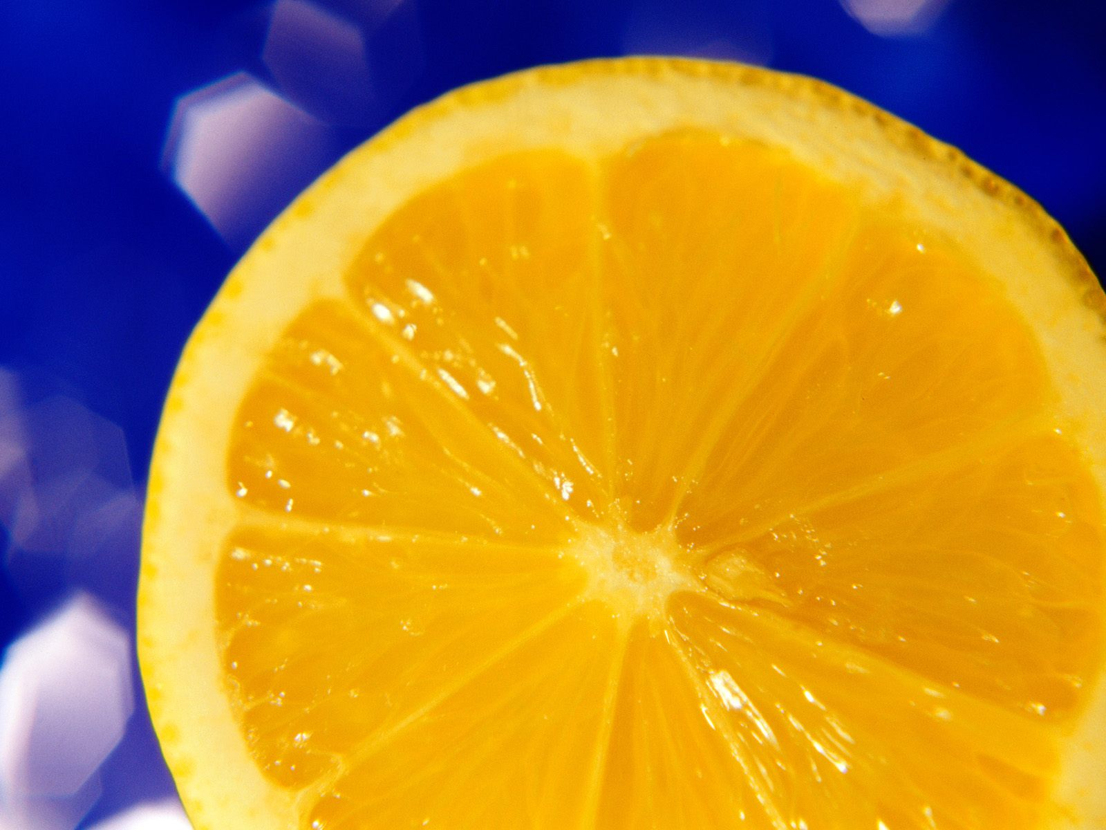 A Lemon Slice Of Life