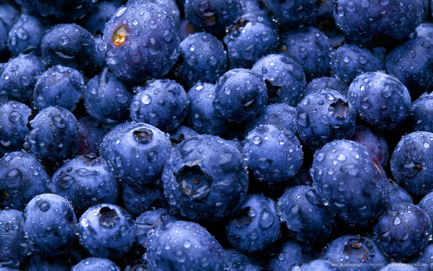 Blueberries - Fruit Wallpaper