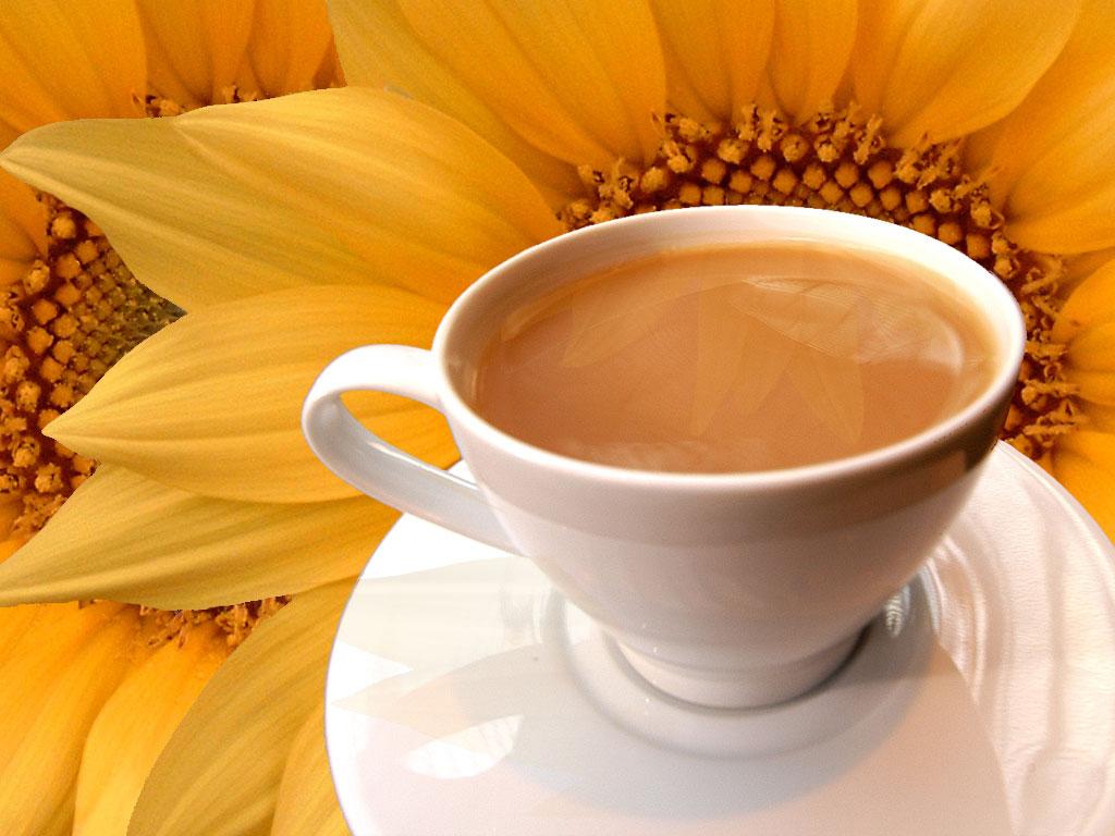 Tea And Sunflowers