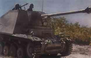 German tank destroyer marten