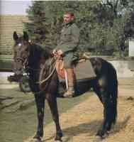 german soldier on horseback