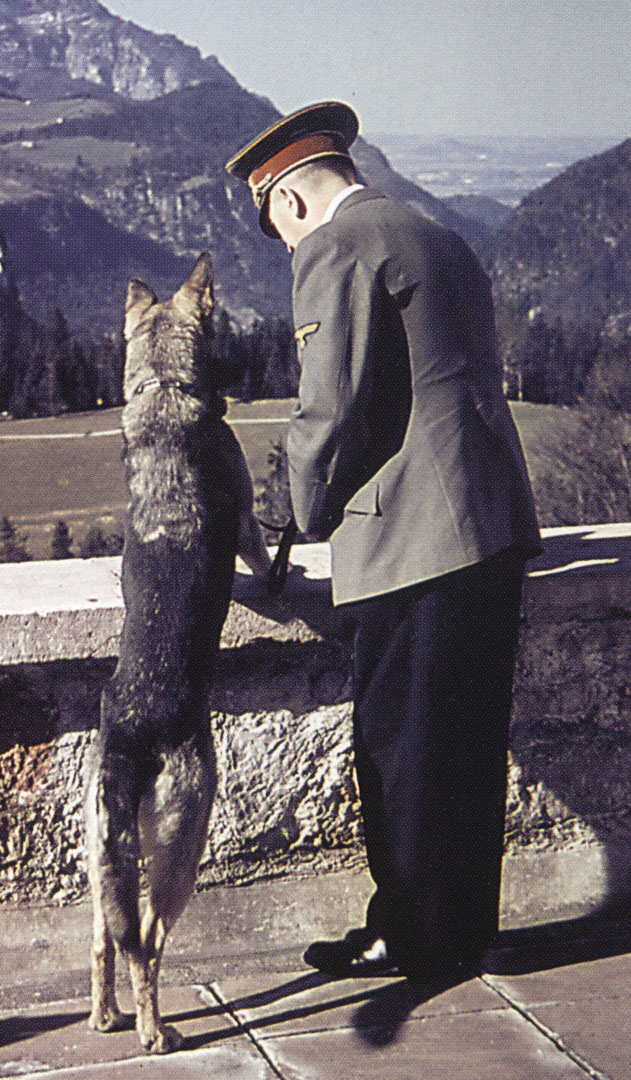 Hitler And Dog Looking Over The Edge