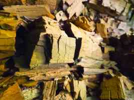 fractured dry wood close up