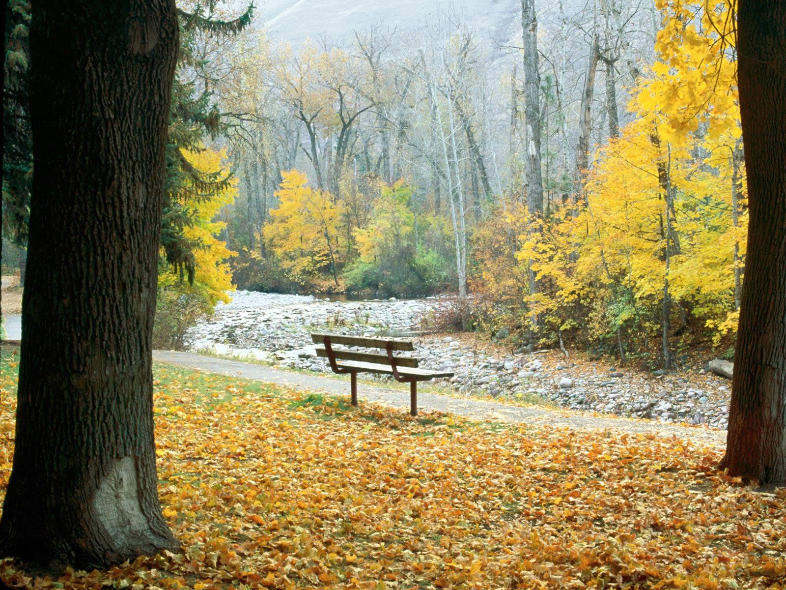 Greenough Park Missoula Montana