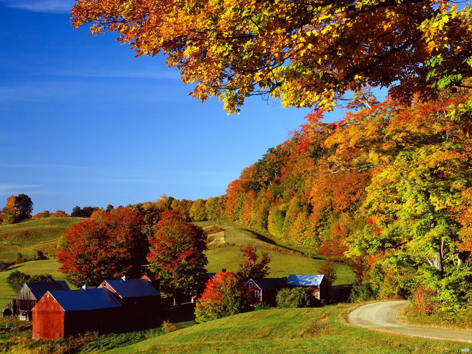 Landscapes  Woodstock In Autumn Vermont
